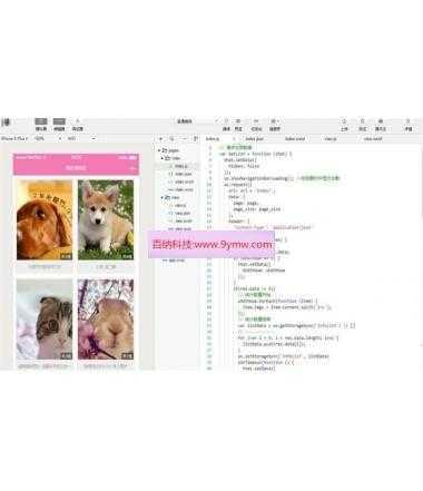 Thinkphp最新图片管理系统小程序源码带后台
