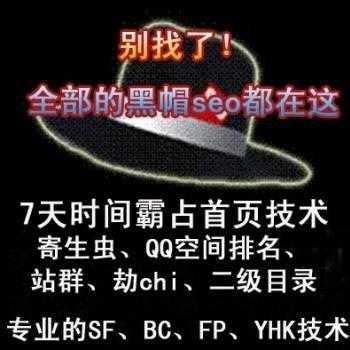 黑帽seo优化实战培训教程视频 seo技术网站课程
