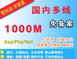 抢!新品:国内免备案空间-1000M送数据库支持Asp、Php、Net不限IIS高速稳定