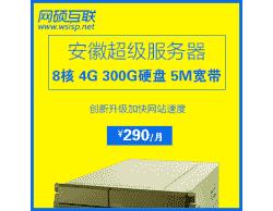 国内八核 4G 300G硬盘 5M带宽超级服务器仅售290元/月,多买多送--网硕互联