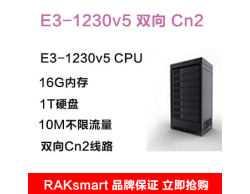 RAKsmart  E3-1230v5 双向Cn2 16G内存  1T硬盘 10M不限流量