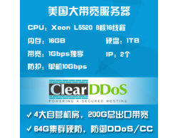 ClearDDoS美国g口服务器1G独享10G防御DDoS8核16G-L5520